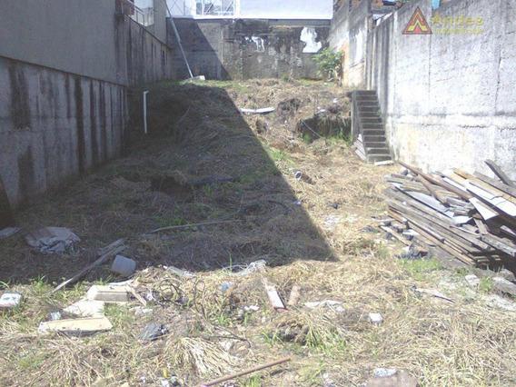 Terreno Residencial À Venda, Vila Paiva, São Paulo. - Te0001