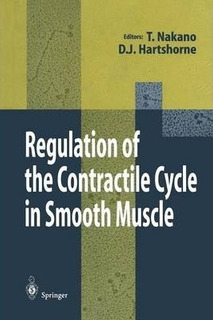 Regulation Of The Contractile Cycle In Smooth Muscle - Ta...