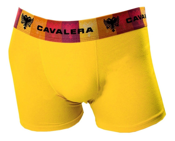 Cueca Boxer Masculina Cavalera Qe5494