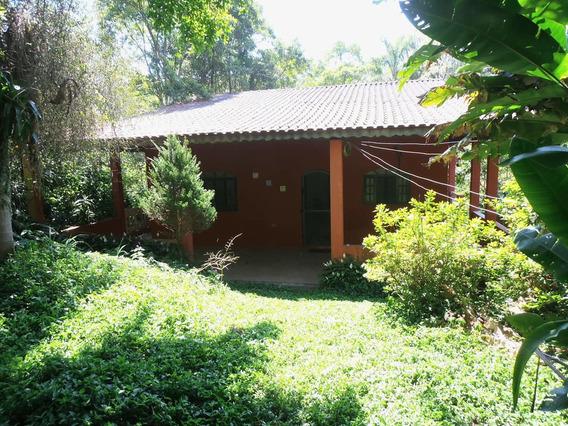 Chácara No Barro Branco - 5.000 M² - 48699