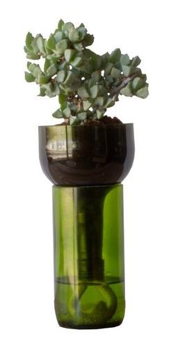 Suculenta Little Plant 24 Sin Soporte, Maceta Autorregante