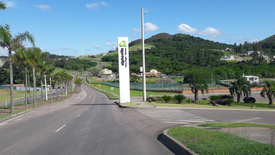 Terreno Em Vila Nova - Rg5072