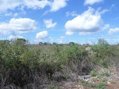Terreno En Venta Con Alta Plusvalía, Conkal, Mérida