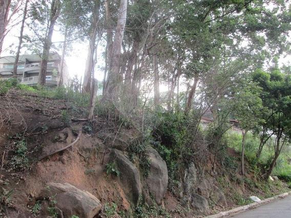Três Lotes De Terrenos Na Região Da Nova Cantareira - 170-im303934