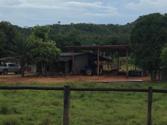 Fazenda Com 2 Dormitórios À Venda, 2057000 M² Por R$ 1.700.000 - Centro - Pariquera-açu/sp - Fa0166
