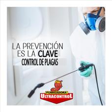 Servicio Profesional De Control De Plagas Y Fumigación.