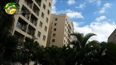 Apartamento Para Locação No Lauzane Paulista. - 1652