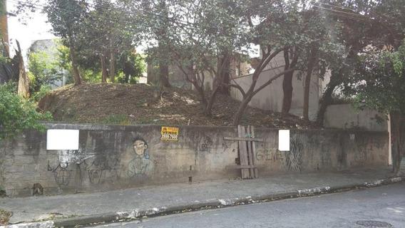 Terreno Padrão Em São Paulo - Sp - Te0013_sales