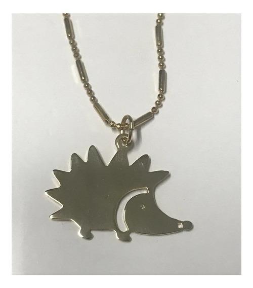 Collar Dije Erizo Husky Colibri Mascotas Hedgehog Chapa Oro