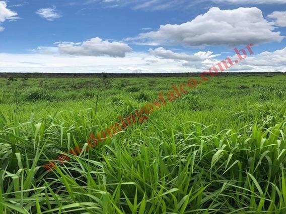 Venda - Fazenda - Zona Rural - Jauru - Mt - D0918