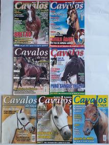 Cavalos Raça E Esporte Treinamento Relax Com 07 Revista