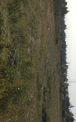 Vendo Lote Terreno 2900m Actopan Hidalgo 30 Min. Pachuca
