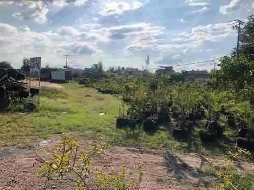 Renta Terreno En Esquina Av Lopez Mateos Sur
