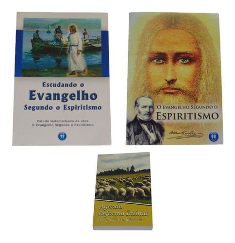 Imagem 1 de 2 de Kit Estudando O Evangelho Segundo O Espiritismo Auta D Souza