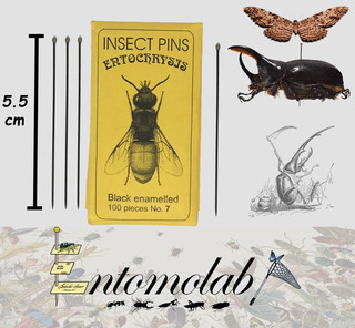Alfileres Entomológicos Entochrysis Negros #7 Insectos