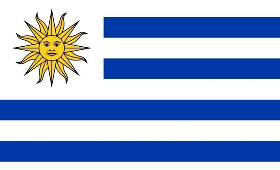 Placa Quadro Decorativo Da Bandeira Do Uruguai 28x20 Cm