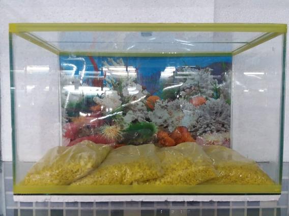 Aquário Peixes Em Geral (20l) - 40 Cm