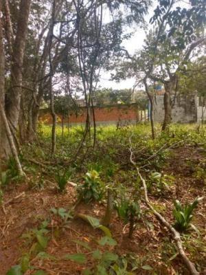 Terreno Em Itanhaém Com 181 M2, Analisa Carro No Pagamento!