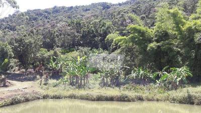 Sítio Rural À Venda, Centro, Tapiraí - Si0004