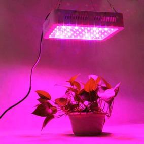 Painel Lampada Led Grow 600w Box Planta Medicinal Vega Flora