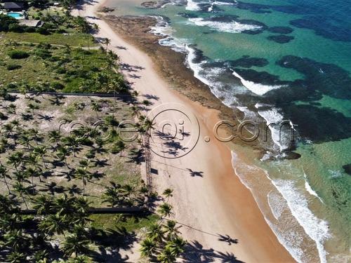 Imagem 1 de 16 de Lote No Condomínio Irauã   426m²   Praia De Taipus De Fora Península De Maraú   Ba - Te00253 - 69475586