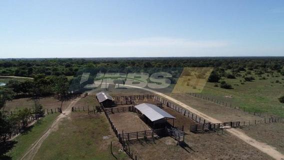 Fazenda Rural À Venda, Zona Rural, Cocalinho. - Fa0069
