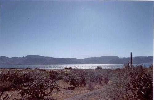 Terreno En Venta En Bahía De La Concepción