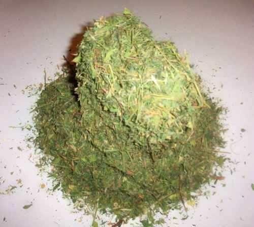 Heno Alfalfa Deshidratada Cuyo Conejo 2 Kg Full