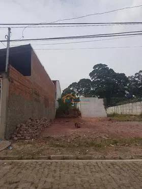 Terreno Residencial À Venda, Vila Santa Teresa (zona Sul), São Paulo - Te0034
