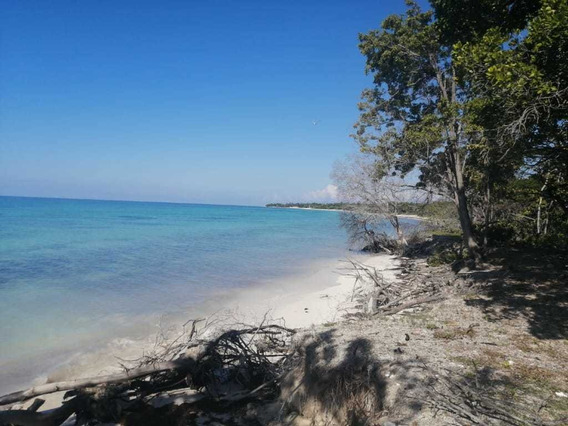 Terreno Con Hermosa Playa En Pedernales