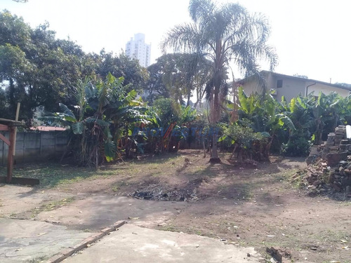 Terreno À Venda Em Jardim Chapadão - Te251707