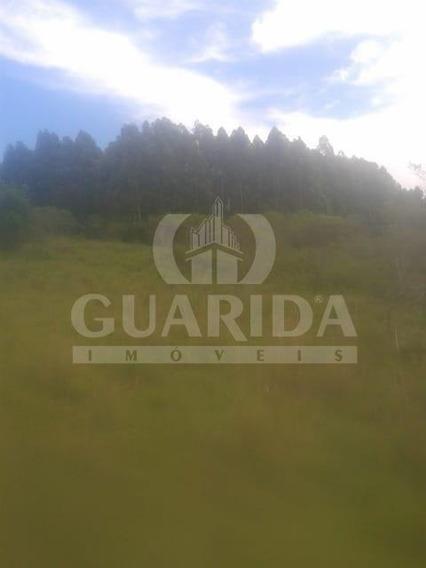 Area - Povoado Piquiri - Ref: 138447 - V-138447