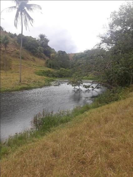 Fazenda Pronta Na Beira De Pista Em Atalaia, Uma Das Melhores Regiões De Alagoas - Ch0005