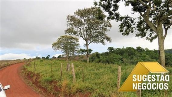 Fazenda Tradicional Gado Região São Miguel Arcanjo - 3069