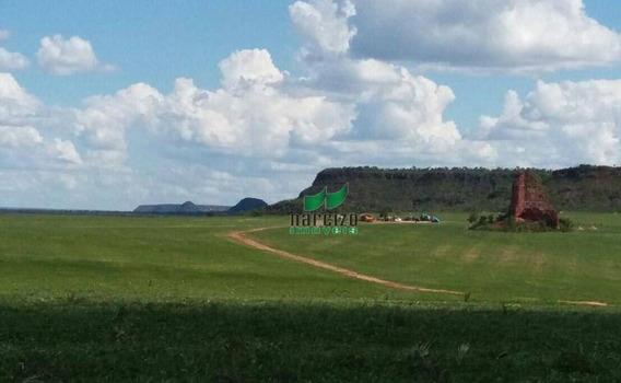 Fazenda À Venda, 17800000 M² Por R$ 20.000.000,00 - Centro - Alto Parnaíba/ma - Fa0019