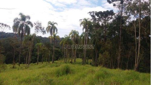 Imagem 1 de 12 de Área À Venda, 21786 M² Por R$ 1.100.000,00 - Jardim Nossa Senhora Das Graças - Cotia/sp - Ar0479