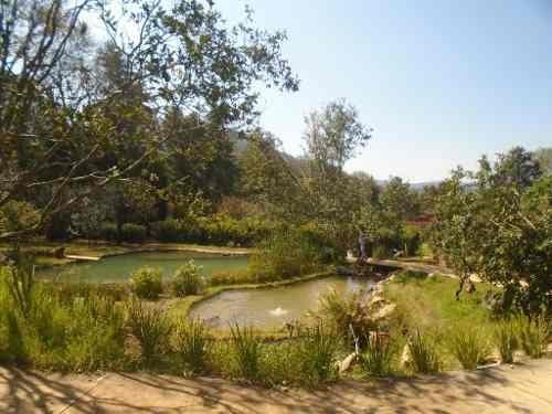 Casa Con Hermosa Vista Al Bosque