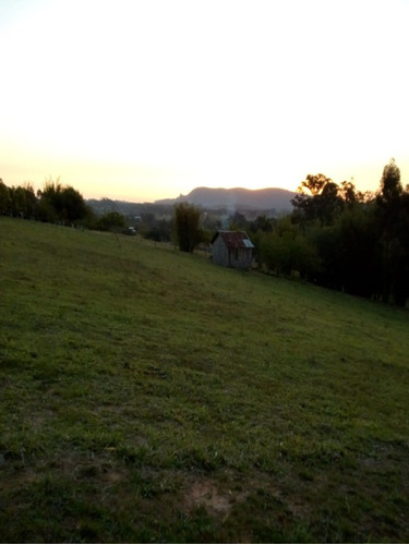 Chácara 5.000 M² - Morungava - Gravataí - Rs - 2457 - 68587767