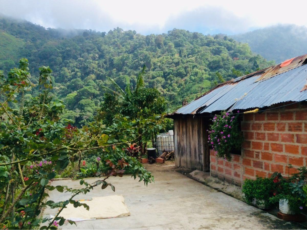 se vende finca cafetera 62 ha con río ciénaga santa marta colombia - 450.000.000 en mercado libre