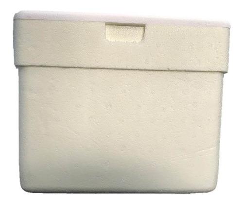 Imagem 1 de 10 de Leve! 1 Caixa De Isopor 8 Litros Térmica Com Alça Termica