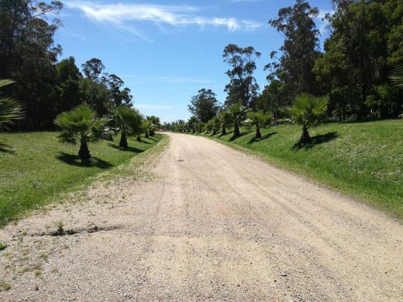 Terreno Barato Financiable En Barrio Privado Canelones - A7