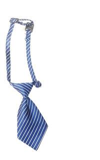 Corbata Para Disfraz Perro Y Gato Pequeño