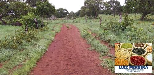 Fazenda À Venda Em Formoso Do Araguaia-to-de 400 Alqueirões (dupla Aptidão) - 1604