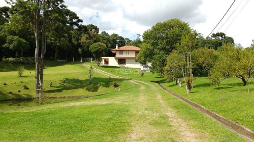 Chacara - Roca Velha - Ref: 2636 - V-2636