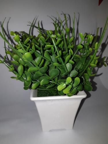 Planta Artificial Con Maceta Blanca 17 Cms