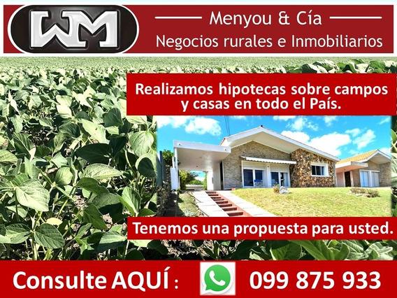 Venta Campo Hipotecas En Campos Y Casas En Uruguay