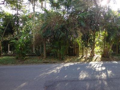 Terreno Residencial À Venda, Chácara Represinha, Cotia. - Te0438