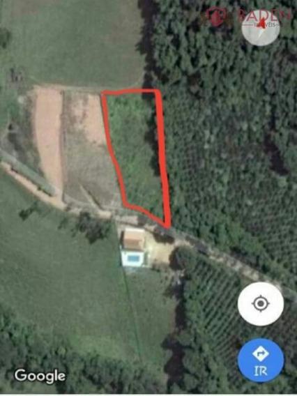 Terreno Rural Em Tuiuti - Sp, Bairro Dos Caetanos - Te00298