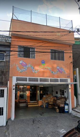 Pet Shop Montado Em Santana - Mi81682