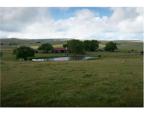 Campo En Uruguay, Aiguá, Ruta 13- Ref: 25110